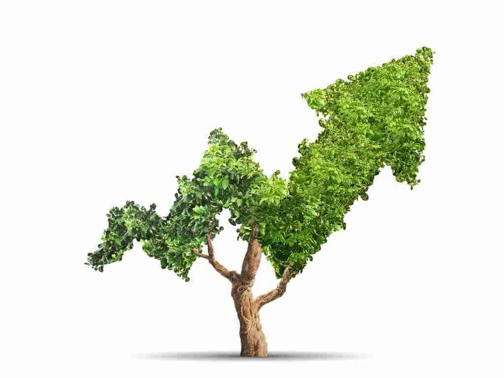 Ökologisch ethische Finanzanlage